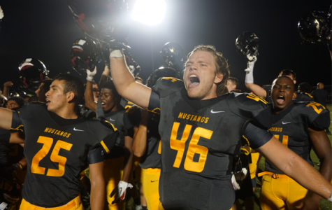 Spotlighting the top 8 moments in Metea athletics of 2015