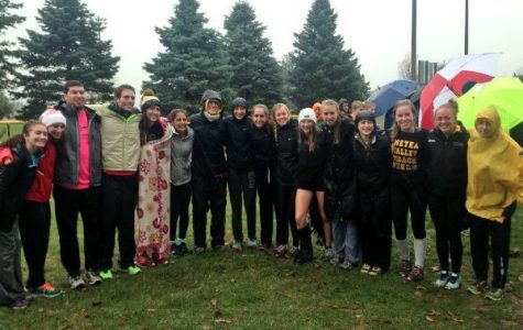 Girls' cross country hitting stride as it qualifies for state