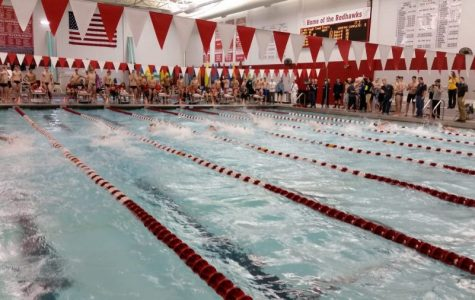 Boys swimming continues to improve following DVC Conference