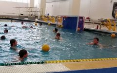 Boys' water polo takes strong record into sectionals