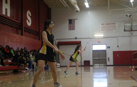 Girls' Badminton serves success at the DuPage Valley Conference Tournament