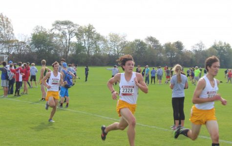 Boys' cross country races to finish the season strong