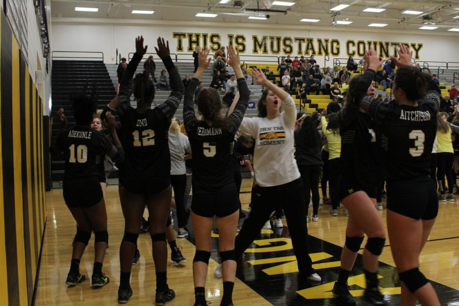 All Area DVC Conference includes multiple girls' volleyball seniors