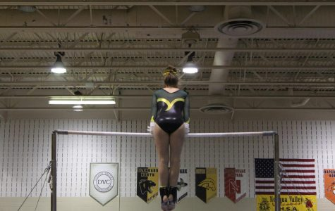Gymnastics Wows at DVC Conference
