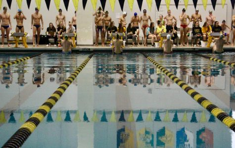 Boys' Swim competes at Sectionals, advancing to State
