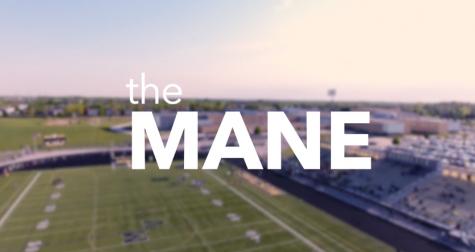 Evolution of The Mane