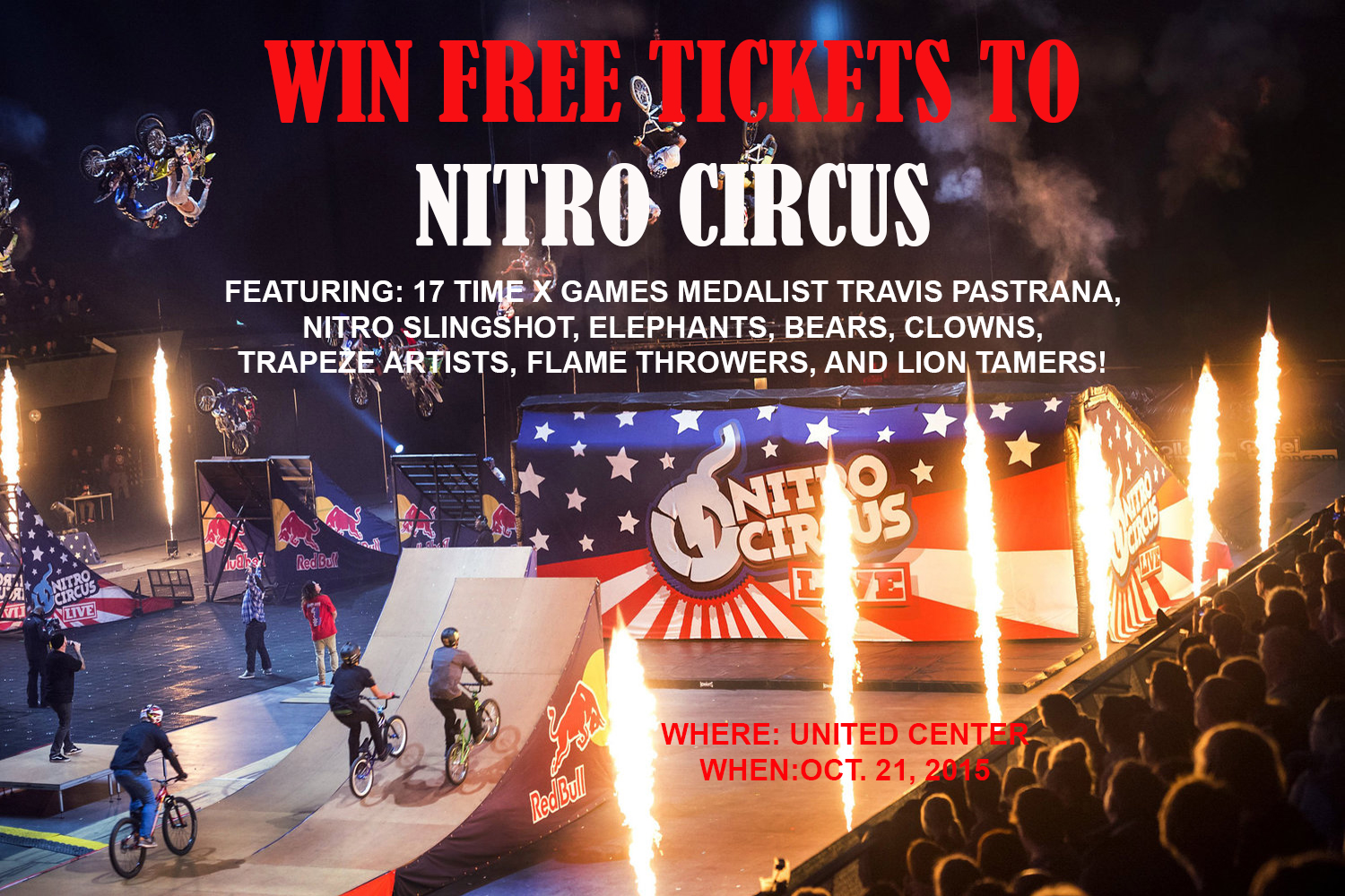 Athletes+perform+during+the+Nitro+Circus+Live+show+in+Amsterdam%2C+The+Netherlands+on+December+3rd%2C+2013.++%2F%2F+Jarno+Schurgers%2FRed+Bull+Content+Pool+%2F%2F+VIN%3A+SI201312050558+%2F%2F+Usage+for+editorial+use+only+%2F%2F+Please+go+to+www.redbullcontentpool.com+for+further+informations.+%2F%2F
