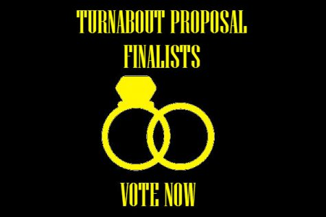 *Closed* Vote for the BEST Turnabout Proposals