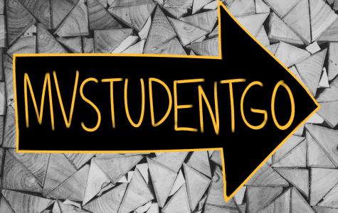 StuGo student voice