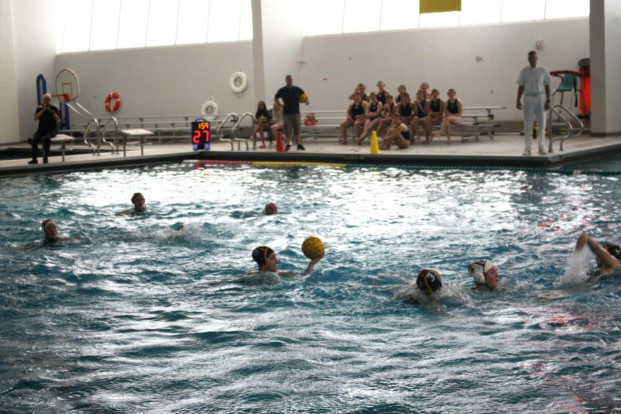 Water+Polo+hosts+Mustang+Varsity+Tournament+in+preparation+for+Sectionals