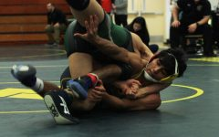 Gallery: Wrestling DVC Championship meet