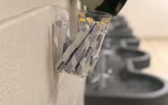 Metea provides free tampons in girls bathrooms in compliance with state law