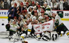 Varsity Hockey prevails against Glenbard to win state championship