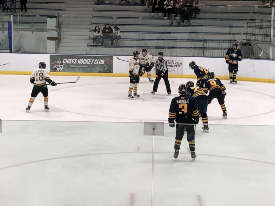 Varsity Hockey rolls through Leyden, heads to state championship