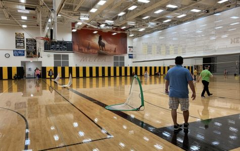 District 204 opposes newly proposed physical education bill