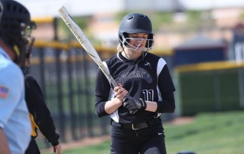 Gallery: Metea girls' softball against Naperville North