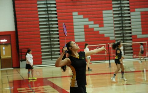IHSA Sectionals: Girls' Badminton 5/2/19