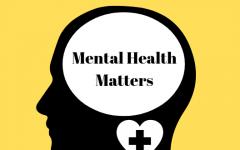 Metea implements new mental health coordinator position to assist students' specific needs