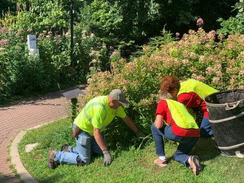 Volunteers beautify downtown Naperville