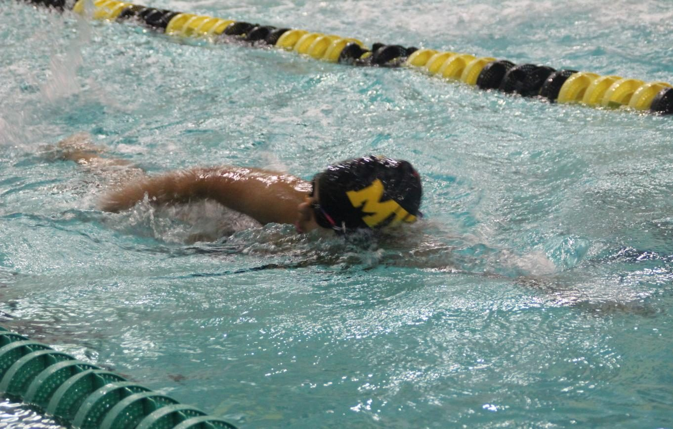 Metea Valley swimmer swims the 500 free style.