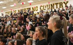 Gallery: Dig pink volleyball