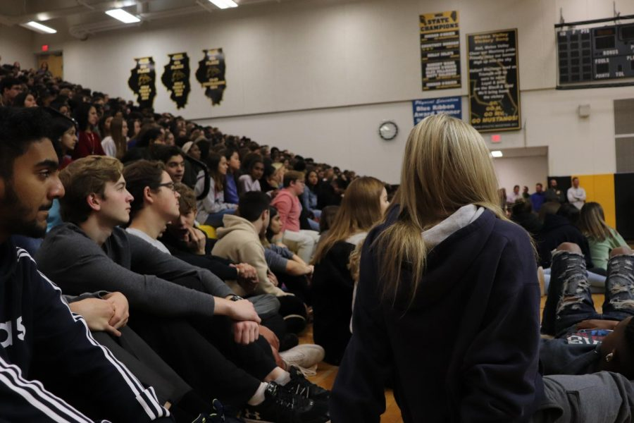 Students watch the Veteran's Day assembly