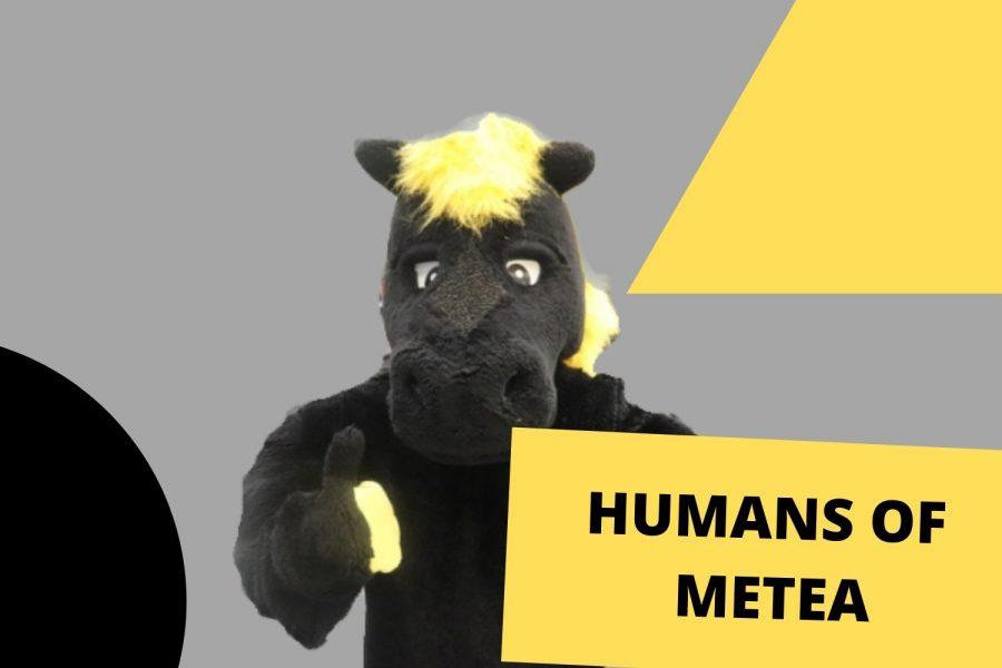 Mascots of Metea: Marty the Mustang