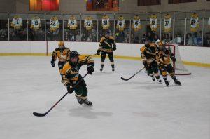 Gallery: Warriors Hockey celebrates Senior Night