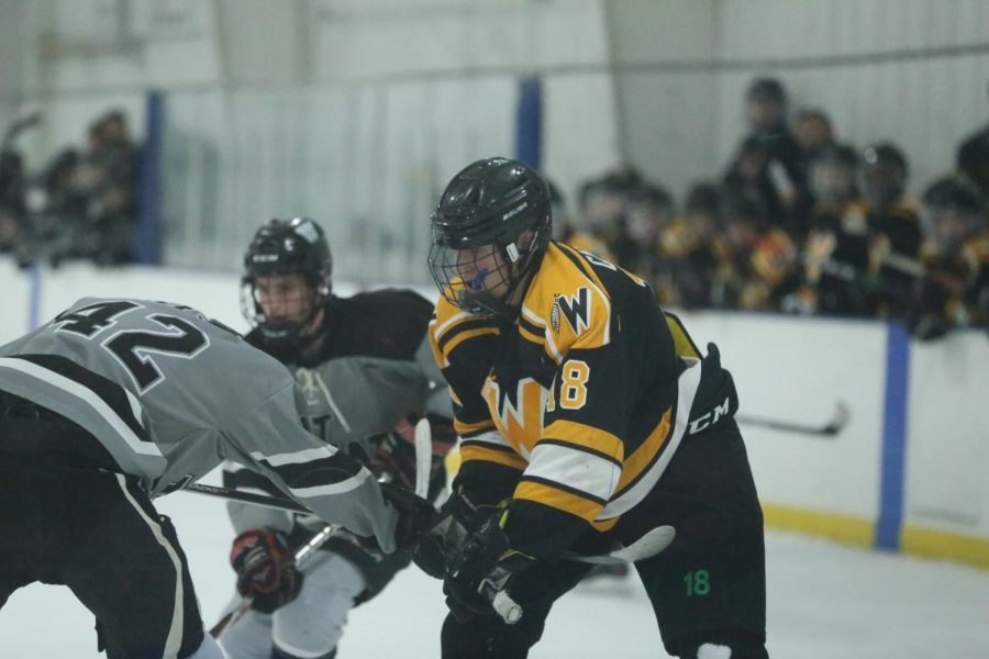 Forward Tony Campise during the Wheaton West game last Thursday