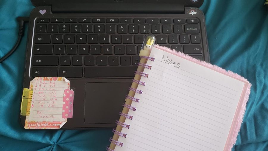 Homework gets a new meaning with the e-learning system