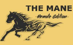 Even with the new environment of working remotely and the obstacles they face through that, the staff of the mane constantly produces excellent content.
