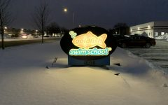 Goldfish Swim school is one business fighting to recover from the lasting effects of the pandemic.