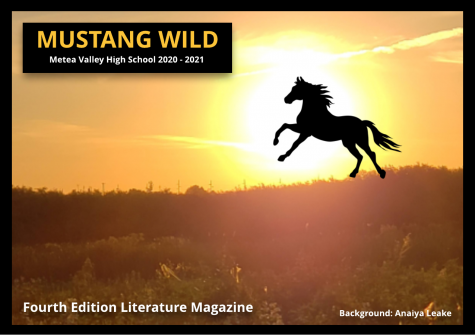Mustang Wild: Issue 4